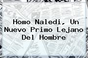 <b>Homo Naledi</b>, Un Nuevo Primo Lejano Del Hombre