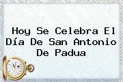 Hoy Se Celebra El Día De <b>San Antonio De Padua</b>