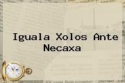 Iguala Xolos Ante <b>Necaxa</b>