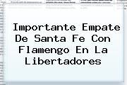 Importante Empate De <b>Santa Fe</b> Con Flamengo En La Libertadores