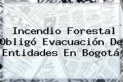 <b>Incendio</b> Forestal Obligó Evacuación De Entidades En <b>Bogotá</b>