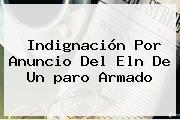 Indignación Por Anuncio Del <b>Eln</b> De Un <b>paro Armado</b>