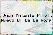 <b>Juan Antonio Pizzi</b>, Nuevo DT De La Roja