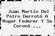 Juan Martín Del Potro Derrotó A Roger Federer Y Se Coronó ...
