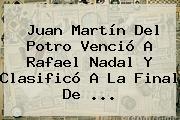 Juan Martín Del Potro Venció A <b>Rafael Nadal</b> Y Clasificó A La Final De ...