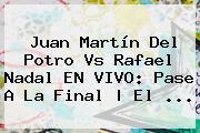 Juan Martín Del Potro Vs <b>Rafael Nadal</b> EN VIVO: Pase A La Final | El ...