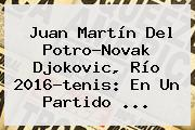 Juan Martín Del Potro-Novak <b>Djokovic</b>, Río 2016-tenis: En Un Partido ...