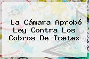 La Cámara Aprobó Ley Contra Los Cobros De <b>Icetex</b>