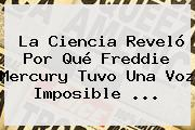 La Ciencia Reveló Por Qué <b>Freddie Mercury</b> Tuvo Una Voz Imposible ...