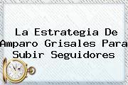 La Estrategia De <b>Amparo Grisales</b> Para Subir Seguidores