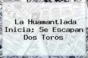 La <b>Huamantlada</b> Inicia; Se Escapan Dos Toros