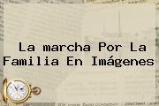 La <b>marcha Por La Familia</b> En Imágenes