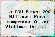 La ONU Busca 200 Millones Para <b>compensar</b> A Las Víctimas Del ...