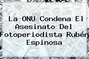 La ONU Condena El Asesinato Del Fotoperiodista <b>Rubén Espinosa</b>
