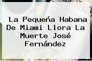 La Pequeña Habana De Miami Llora La Muerte <b>José Fernández</b>