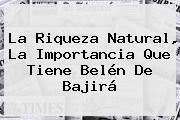 La Riqueza Natural, La Importancia Que Tiene <b>Belén De Bajirá</b>