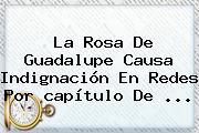 <b>La Rosa De Guadalupe</b> Causa Indignación En Redes Por <b>capítulo</b> De ...