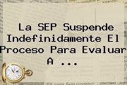 La <b>SEP</b> Suspende Indefinidamente El Proceso Para Evaluar A <b>...</b>