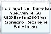 Las águilas Doradas Vuelven A Su 'nido': Rionegro Recibe A Patriotas