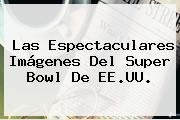Las Espectaculares Imágenes Del <b>Super Bowl</b> De EE.UU.