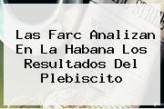 <b>Las Farc Analizan En La Habana Los Resultados Del Plebiscito</b>