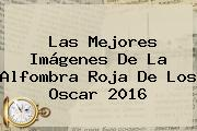 Las Mejores Imágenes De La Alfombra Roja De Los <b>Oscar 2016</b>