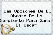 Las Opciones De <b>El Abrazo De La Serpiente</b> Para Ganar El Oscar