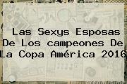 Las Sexys Esposas De Los <b>campeones</b> De La <b>Copa América 2016</b>