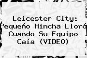 <b>Leicester City</b>: Pequeño Hincha Lloró Cuando Su Equipo Caía (VIDEO)