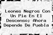 <b>Leones Negros</b> Con Un Pie En El Descenso; Ahora Depende De Puebla