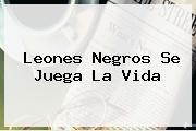 <b>Leones Negros</b> Se Juega La Vida