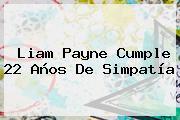 <b>Liam Payne</b> Cumple 22 Años De Simpatía