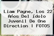<b>Liam Payne</b>, Los 22 Años Del ídolo Juvenil De One Direction |<b> FOTOS