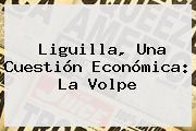 <b>Liguilla</b>, Una Cuestión Económica: La Volpe