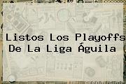 Listos Los Playoffs De La <b>Liga Águila</b>