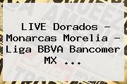 LIVE Dorados - Monarcas Morelia - <b>Liga BBVA</b> Bancomer MX <b>...</b>