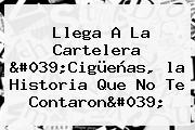 Llega A La Cartelera &#039;<b>Cigüeñas</b>, <b>la Historia Que No Te Contaron</b>&#039;
