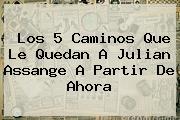 Los 5 Caminos Que Le Quedan A <b>Julian Assange</b> A Partir De Ahora