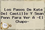 Los Pasos De <b>Kate Del Castillo</b> Y Sean Penn Para Ver A ?El Chapo?