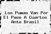 Los Pumas Van Por El Pase A Cuartos Ante <b>Brasil</b>