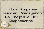 ¿<b>Los Simpsons</b> También Predijeron La Tragedia Del Chapecoense?