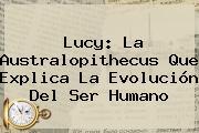 <b>Lucy</b>: La <b>Australopithecus</b> Que Explica La Evolución Del Ser Humano