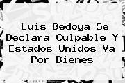 <b>Luis Bedoya</b> Se Declara Culpable Y Estados Unidos Va Por Bienes