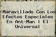 Maravillado Con Los Efectos Especiales En <b>Ant</b>-<b>Man</b> | El Universal