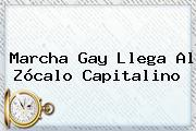 <b>Marcha Gay</b> Llega Al Zócalo Capitalino