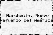 <b>Marchesín</b>, Nuevo Refuerzo Del América