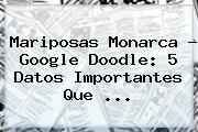 <b>Mariposas Monarca</b> ? Google Doodle: 5 Datos Importantes Que <b>...</b>
