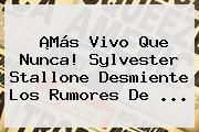 ¡Más Vivo Que Nunca! <b>Sylvester Stallone</b> Desmiente Los Rumores De ...