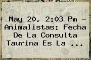 May 20, 2:03 Pm - Animalistas: Fecha De La Consulta Taurina Es La ...