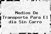 Medios De Transporte Para El <b>dia Sin Carro</b>